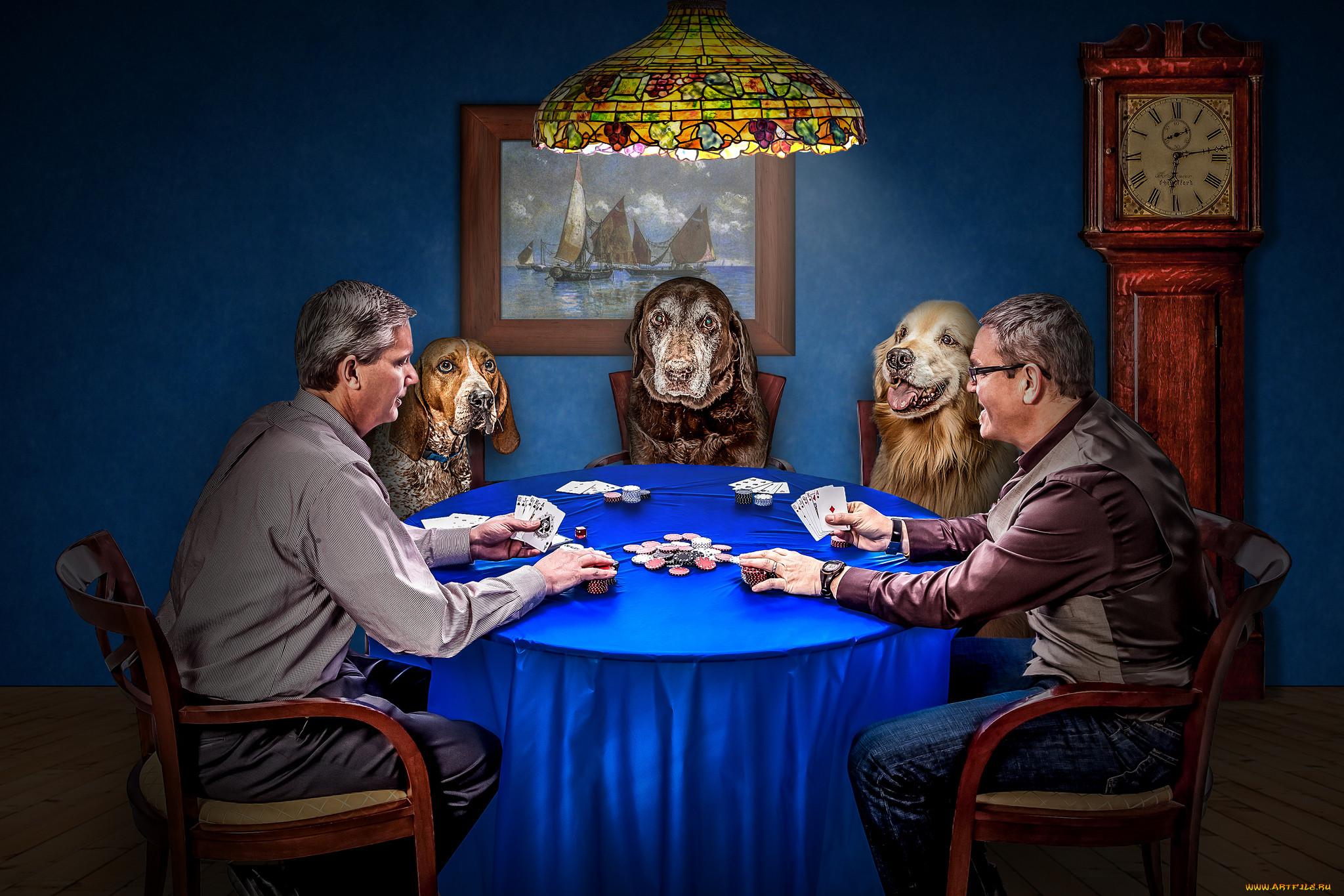 человеку доводилось картинки на тему карточных игр александрович